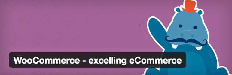 best-ecommerce-plugin
